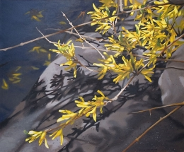 Forsythia #2 by Lenni Workman
