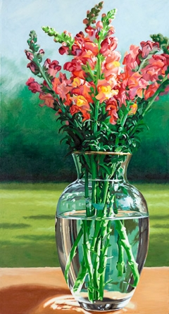 Ode to Snapdragons Lenni Workman